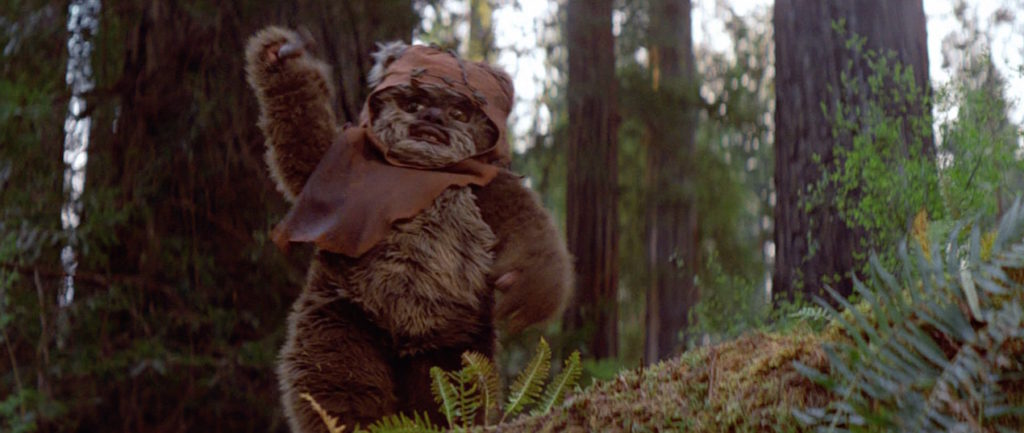 Maskotka Star Wars (Ewok Wicket)